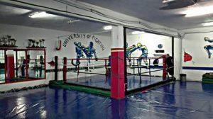 University of Fighting